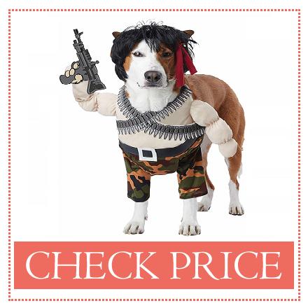 medium sized dog halloween costumes