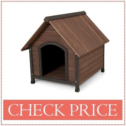Brown dog house