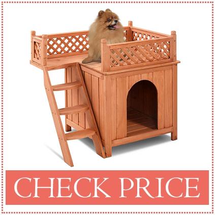 groodle goldendoodle dog house