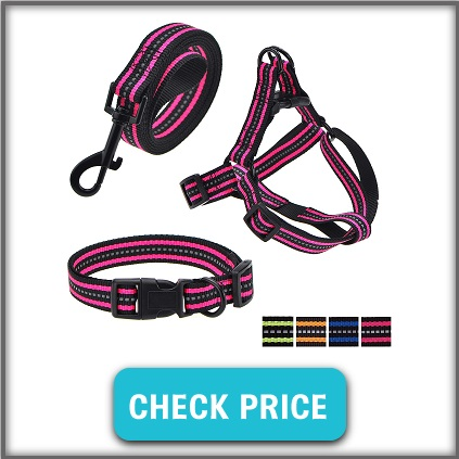leash collar harness for dogs