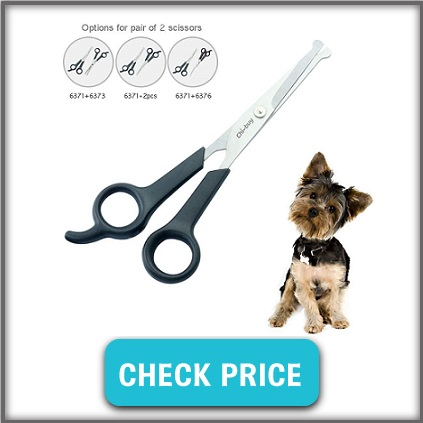 blunt ended scissors for dogs