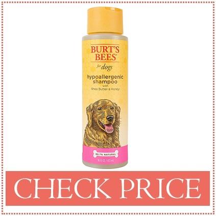 bernedoodle shampoo for sensitive skin