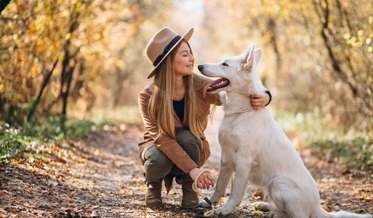 How to Take Care of Dogs – A Quick Guide
