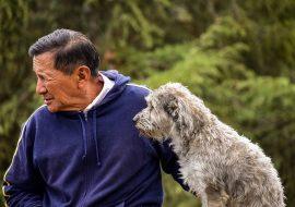 Health Benefits of Dogs for Elders